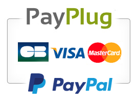 """Résultat de recherche d'images pour """"paypal payplug"""""""